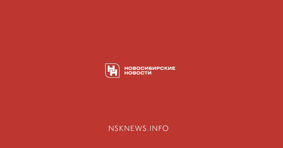 Картинки по запросу nsknews.info лого