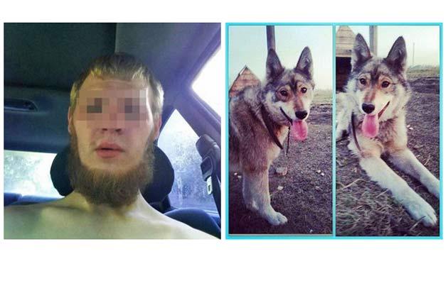 Гражданин Новосибирска пытался сжечь машину знакомой, апотом зверски убил еесобаку