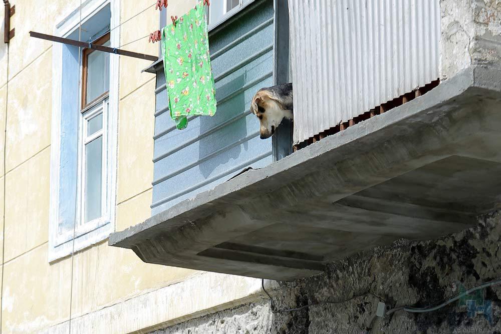 Арендовать однокомнатную квартиру вКрасноярске стало дешевле