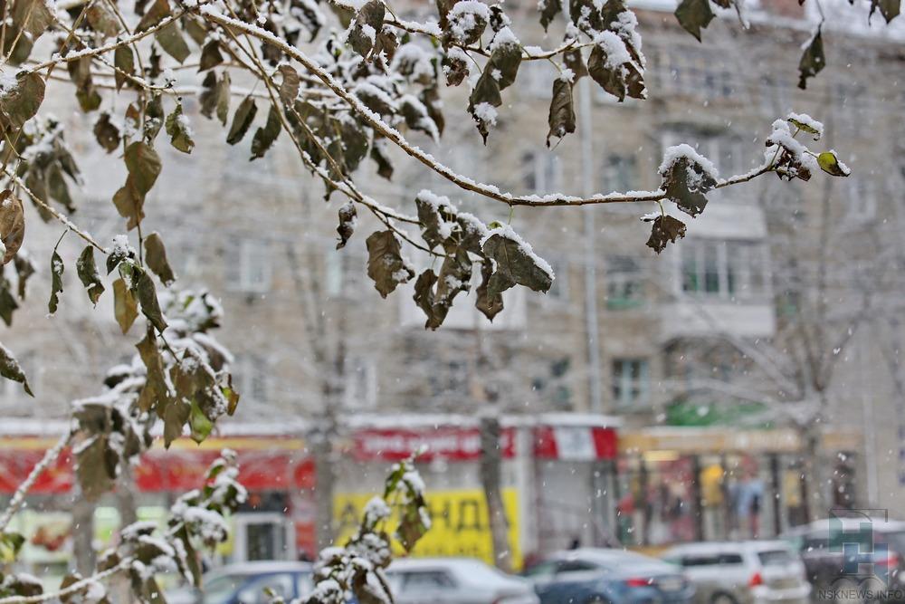 Ввыходные город накроет снежное покрывало