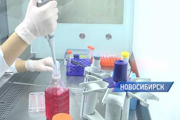 Новосибирские ученые создали искусственную кожу, чтобы сохранить жизнь звериным