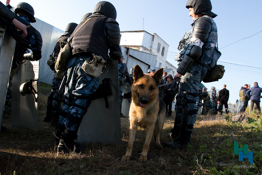 Новосибирские полицейские задержали сообщавшего обомбах «Шакала»