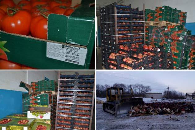 Неменее 9 тонн свежих овощей ифруктов раздавили трактором вНовосибирске