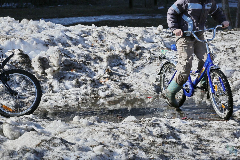 Из-за тёплой весны новосибирские велосипедисты стали попадать в трагедии раньше доэтого обычного