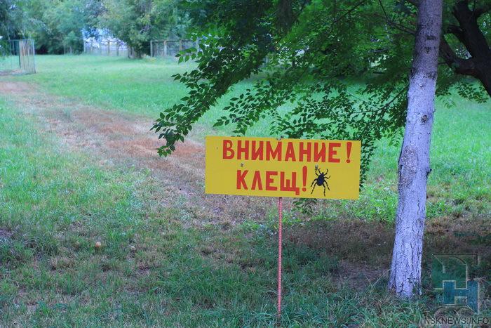 ВЛипецкой области отукусов клещей уже пострадали три человека