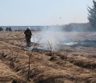 Безопасный пикник: как не сжечь лес в походе